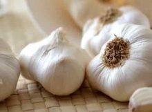 10 Khasiat Bawang Putih Untuk Kesehatan dan Kehidupan Sehari-Hari