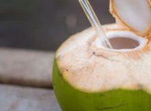 10 Manfaat dan Khasiat Air Kelapa Untuk Kesehatan, Penting!