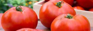 11 Khasiat Tomat Untuk Kesehatan Dan Nilai Gizinya
