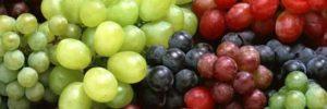 10 Khasiat Cuka Apel Untuk Diet Sangat Ampuh
