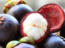 10 Manfaat Buah Manggis Untuk Kesehatan - Khasiat Sehat
