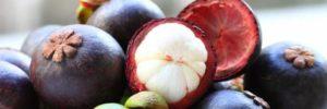 10 Khasiat Buah Manggis Untuk Kesehatan