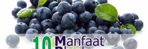 10 Khasiat Buah Blueberry untuk Kesehatan