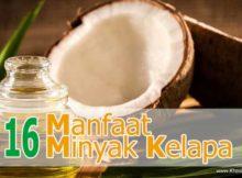 16 Manfaat Minyak Kelapa untuk Kesehatan - Khasiat Sehat