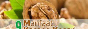 9 Khasiat Kacang Kenari untuk Kesehatan