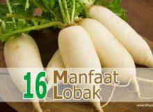 16 Manfaat Lobak untuk Kesehatan dan Efek Sampingnya - Khasiat Sehat