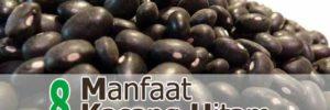 8 Manfaat Kacang Hitam untuk Kesehatan