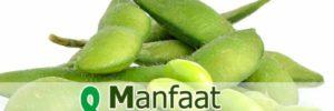 8 Khasiat Kacang Edamame untuk Kesehatan