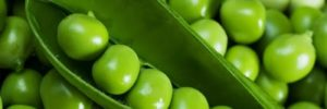11 Khasiat Kacang Polong untuk Kesehatan