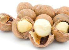 Manfaat Kacang Macadamia