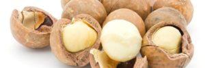 10 Khasiat Kacang Macadamia untuk Kesehatan