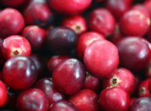 Manfaat Cranberry