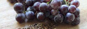 14 Manfaat Biji Buah Anggur untuk Kesehatan