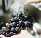 Kulit buah yang sangat bermanfaat untuk kesehatan